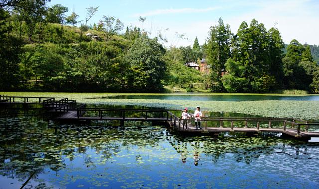 【温泉近くて満天の星空!ハンモックユーザーにも丁度いい!】池の山キャンプ場